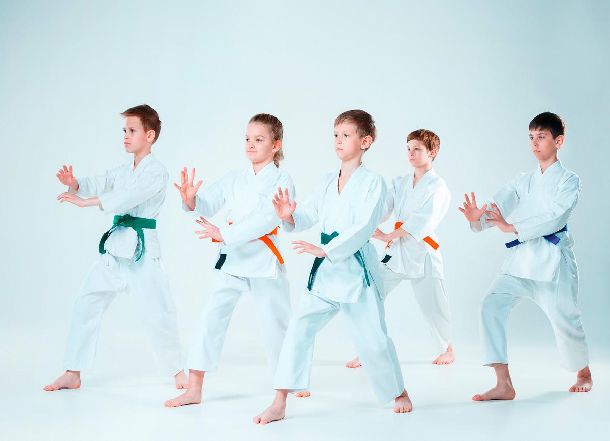 karate infantil   anos