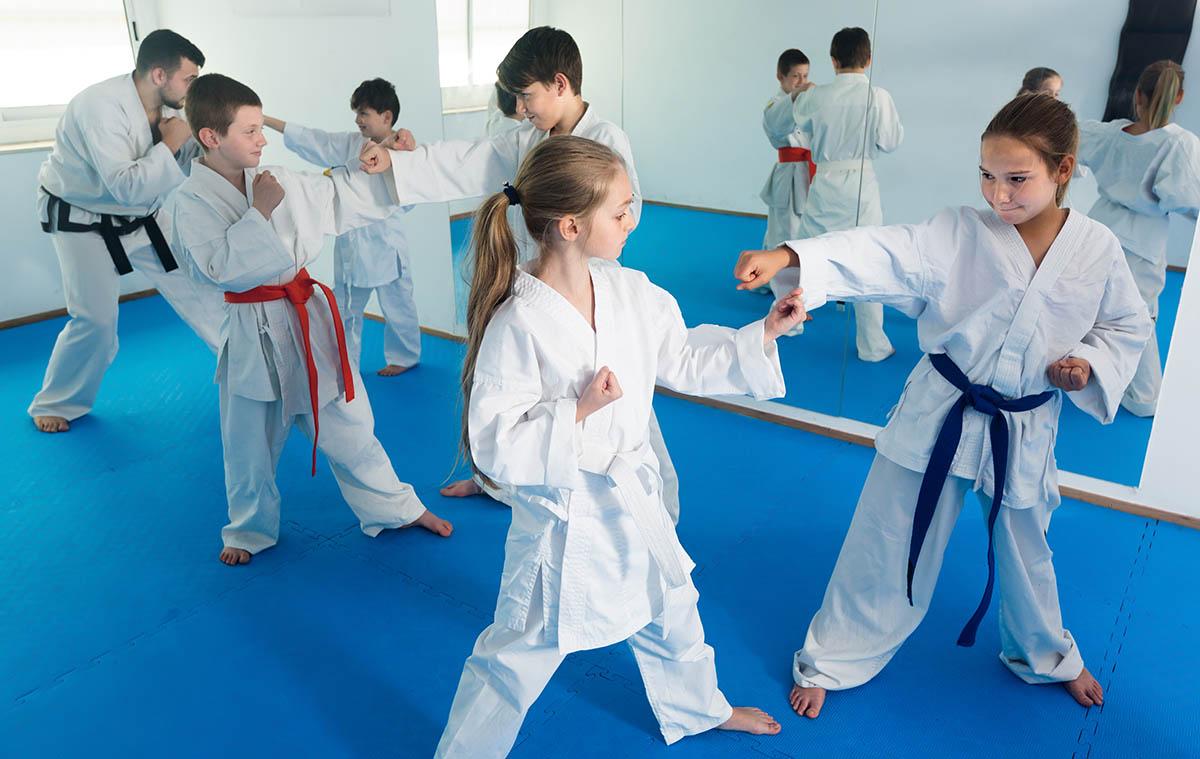 Pre Karate Judo